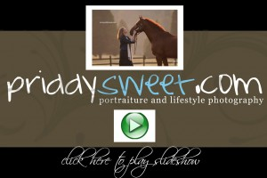 priddysweet-video-tagweb